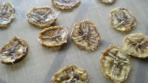 Dehydrated Cinnamon Nutmeg Vanilla Banana Chips