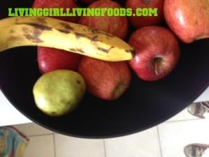 FruitEyeLevelLogo