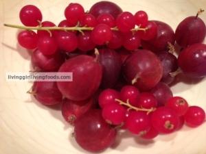 GooseberriesNCurrantsLGLF